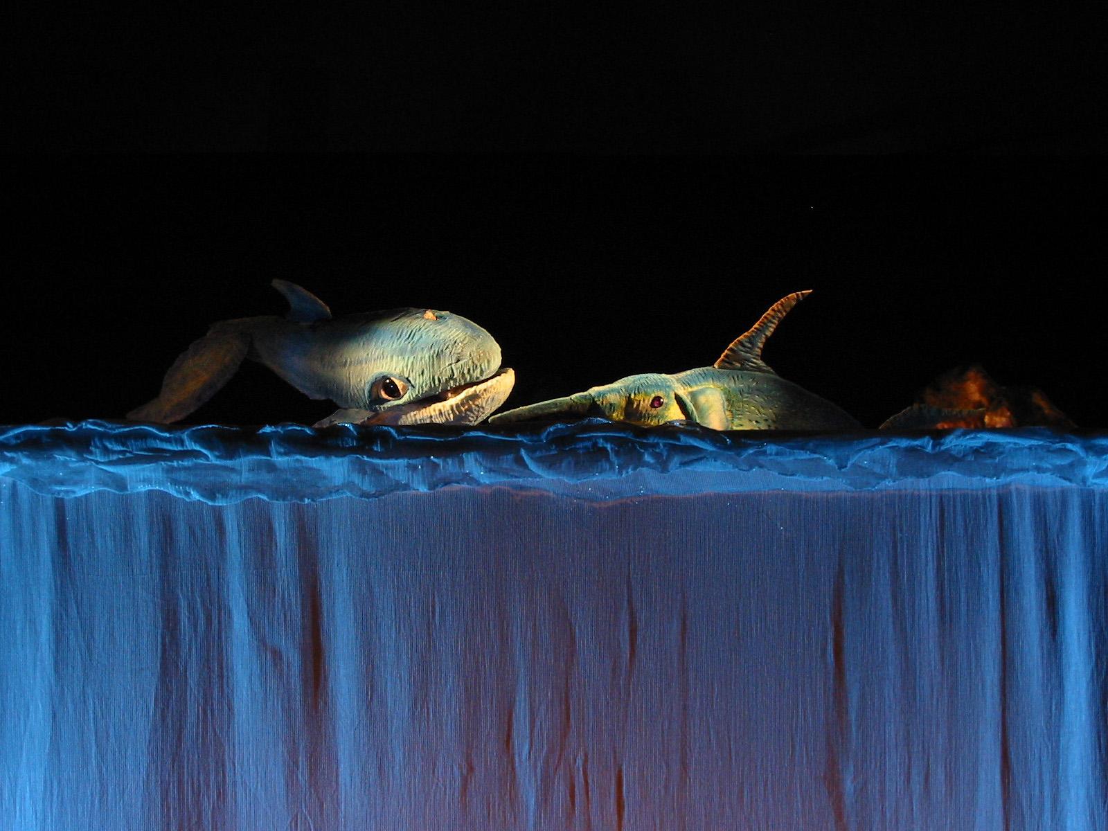 immagine azzurra balena